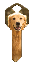 HK61 - Golden Retriever house, happy, key, golden, retriever, dog, puppy, kw1, kw10, sc1, wr5